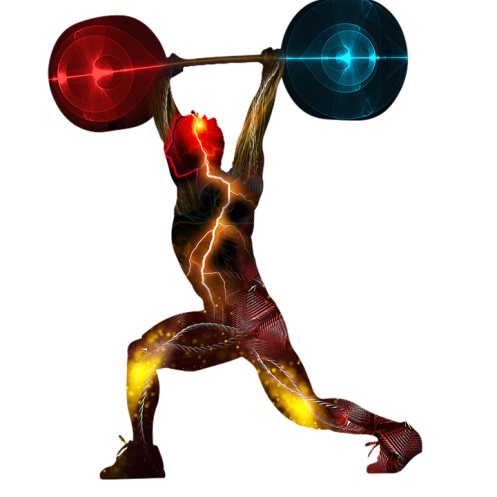 weightlifting-2227543_960_720.png